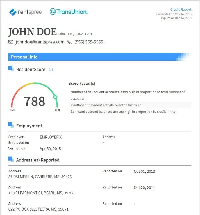 credit report sample1